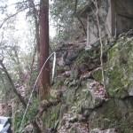 本瀧寺 お滝場の龍の口