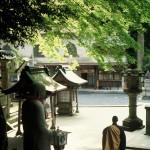 本瀧寺境内